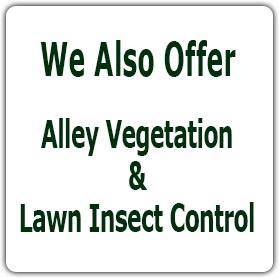 We also offer Alley Vegetation & Lawn Insect Control